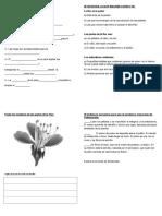 92381671-guia-las-plantas.doc
