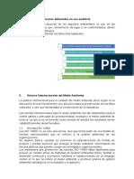 Auditoria-ambiental.docx