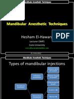 Mandibular Anesthetic Techniques