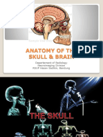 ANATOMY OF THE SKULL & BRAIN.ppt