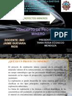 Tania Proyectos