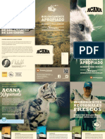 Aca Cat Flyer 2014 - Es Lo-V1