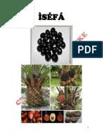 Isefa.pdf