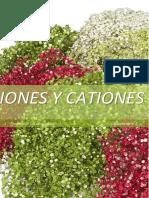 Informe 2 de Quimica(PRIMER GRUPO DE CATIONES)