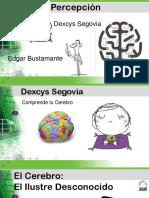neuropercepcion