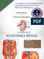 diureticos-150518192940-lva1-app6892.pptx