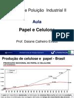 Processo Fabricacao Celulose + Papel