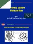 10.a)Obstetri-Anemia Dalam Kehamilan Dr. Sigit Fix Ona