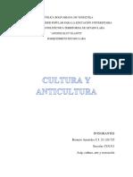Cultura y Anticultura