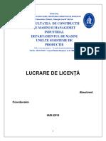 Lucrare de Licenta