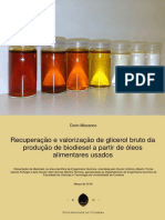 Recuperacao e Valorizacao de Glicerol Br