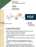 BIOSINTEZA-KAROTENOIDA1