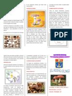 283264136-Triptico-El-Reino-Fungi.docx