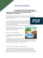 Organización Del Ecosistema 2