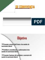COMITES DE CONVIVENCIA LEGISLACIÓN
