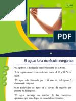 45126_179787_Características de Los Seres Vivos