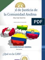 Tribunal de Justicia de la Comunidad Andina.pptx