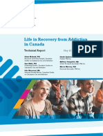 CCSA Life in Recovery From Addiction Report 2017
