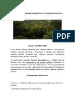o Que e Uma Floresta