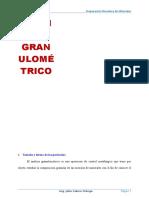 11.-Analisis Granulometrico