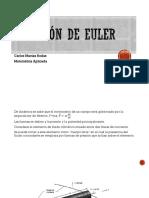 Ecuación de Euler, Presentación Doc Memo.