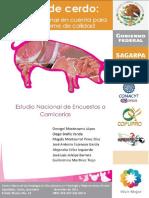 Carne de Cerdo.pdf