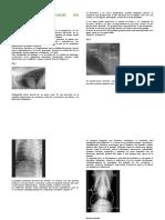 PRACTICA Word 2013_Radiología Pulmonar.docx