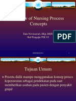 review-of-nurssing-process_2011.ppt