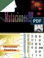 sEMANA 15  alteraciones cromosómicas-ciclo Celular.pptx