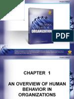 Human Behavior in Organization Chapter 1 (1)