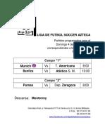 Liga de Futbol Soccer Azteca