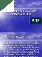 Patología Del Aparato Cardiovascular