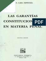 Garantias Cosntitucionales en Materia Penal
