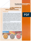 2008_Soto_et_al_Prototipos_Trilladoras_de_Granos_PROINPA.pdf