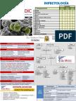 Infectologia Enam Essalud 2017 Teoria Final (1)