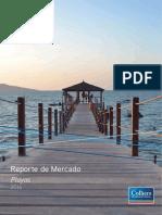 Reporte Inmobiliario Mercado de Playas