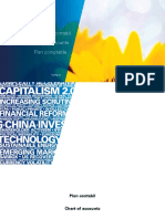 plan_conturi_web.pdf
