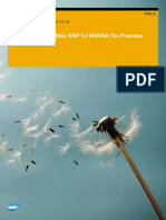 Custom Code within SAP S4HANA OnPremise.pdf