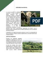 Actividad-económica-arequipa.docx
