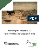 Cheeta Report 2010 - Naresh Kadyan