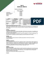 TAE 2 manual breve.docx