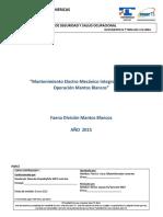 Programa de Salud Seguridad y Gestión Ambiental  Contrato Mantos Blancos Integral 2015.docx