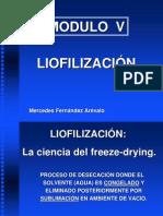 LIOFILIZACION Por Mercedes Fernández Arévalo