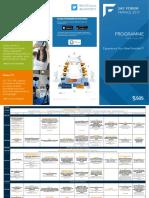 Programme Sff 2017web