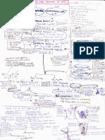 Anatomy - Lymphatic Drainage Handwritten Notes