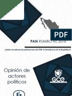 Rep Accion Nacional 2017