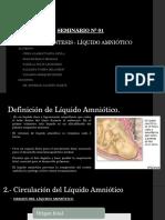 Amniocentesis - Líquido Amniótico