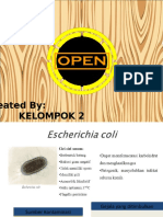 302637028 Bakteri Penyebab Penyakit Saluran Pernafasan Ppt