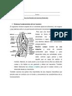 Guía de Estudio de Ciencias Naturales 2
