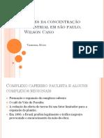 Raízes Da Concentração Industrial Em SP W. Cano